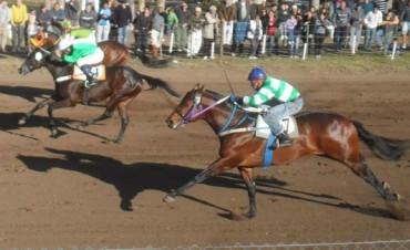 Novel Mía ganó en Daireaux en la carrera de 800 metros