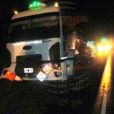 Un camión embistió a un novillo que se encontraba sobre la Ruta Provincial 65