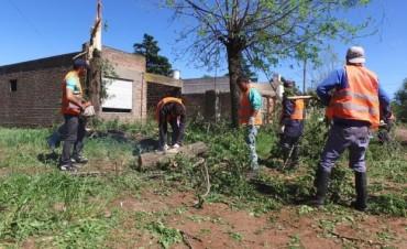 Después del Tornado: Limpian Pirovano junto a los vecinos en su Aniversario