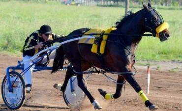 Otro triunfo, otra categoría para Mauro Campitelli y su caballo 'El Negro'