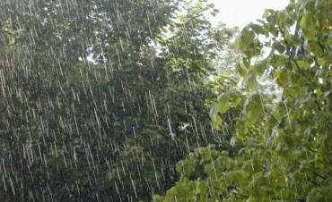 En Urdampilleta un promedio de 50 milímetros en la lluvia de este lunes