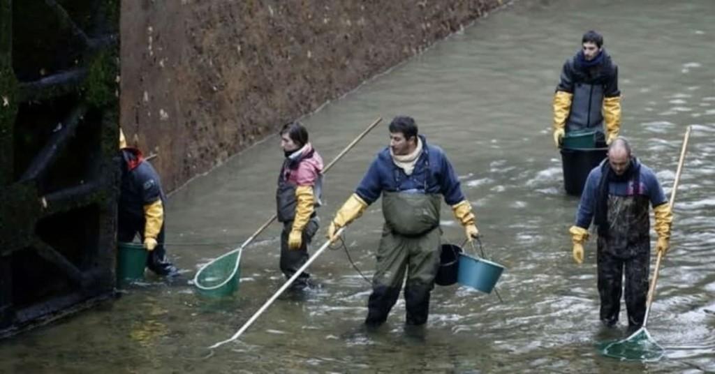 Arroyo Las Flores: Buscaron un pescador porque temían se hubiera ahogado y había caminado en busca de