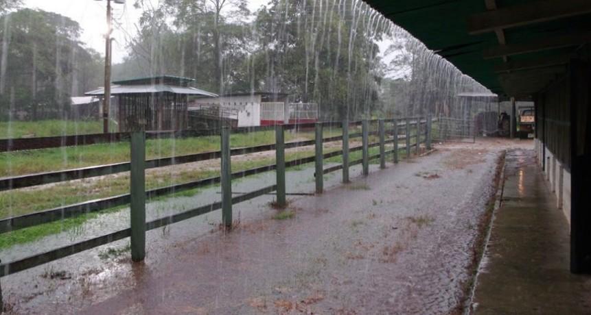 Registro de lluvias del 22 de febrero; Entre 20 y 65 mm