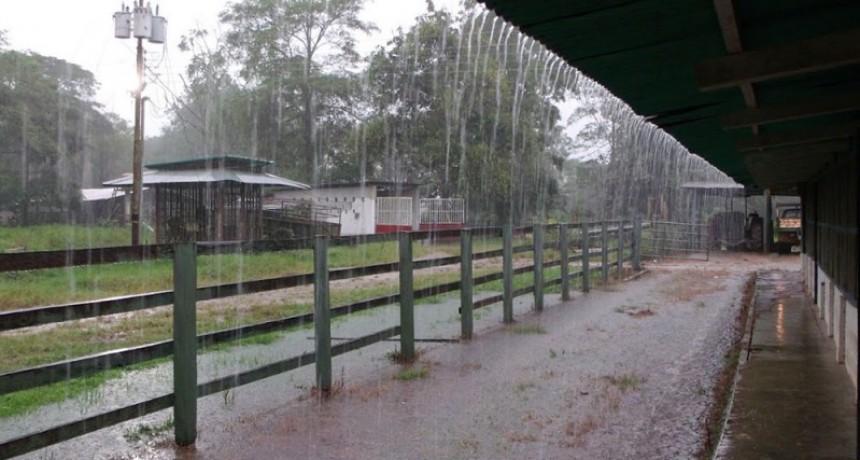 Registro de la lluvia caída en la jornada de este martes 19; hasta 15 mm