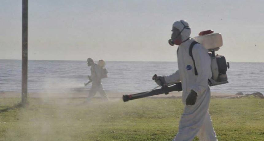 Se dispararon los casos de dengue en la provincia: son 633 y crecieron 73% en una semana