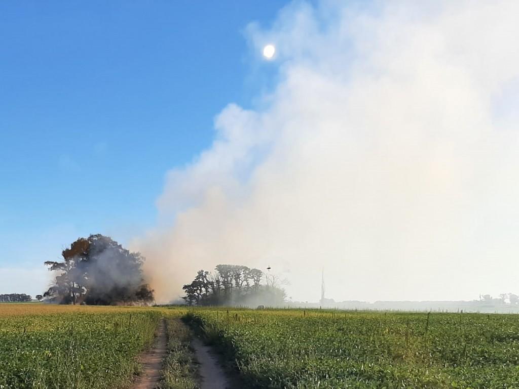 La salida de Bomberos Voluntarios tuvo como finalidad extinguir un incendio forestal