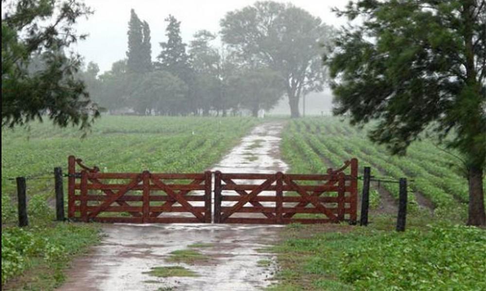 Registro de lluvias actualizados: En algunos parajes rurales superaron los 200 milímetros