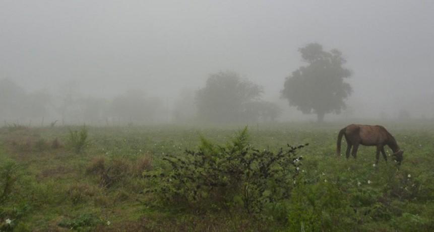 Lluvias dispares en toda la zona