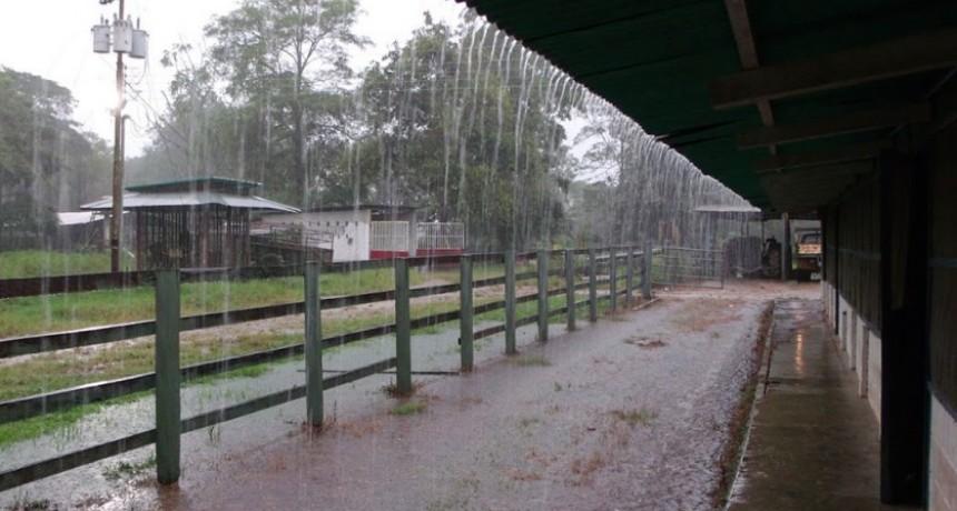 Se registraron hasta 20 mm caídos en Urdampilleta y la zona