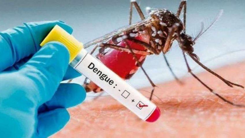 Saladillo; Se confirman dos casos positivos de Dengue