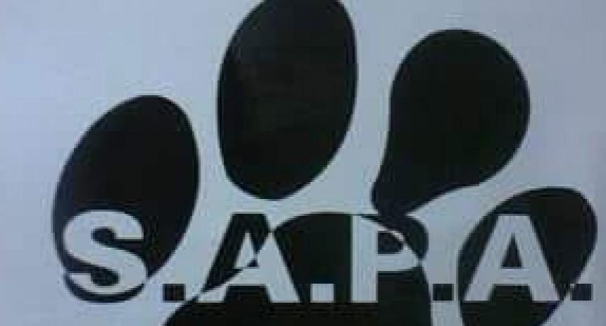 Continua la campaña de castraciones gratuitas en Urdampilleta y Pirovano