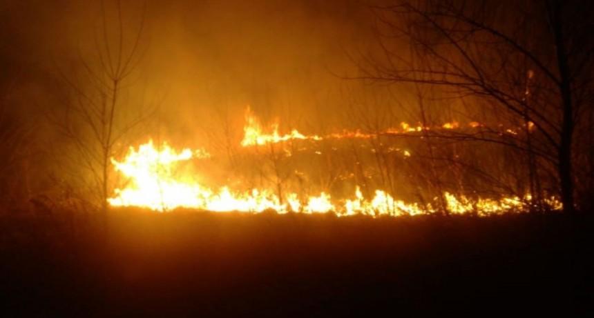 Bomberos de Pirovano: Salida por quema de pastizales sobre ruta 65