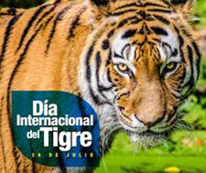 Día Internacional del Tigre