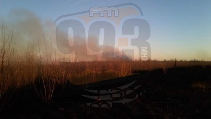 Pirovano: Bomberos de la localidad sofocaron un intenso incendio forestal