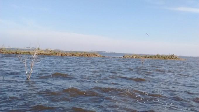 La crecida de Laguna Alsina se está 'comiendo' la isla