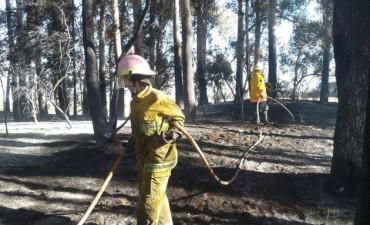 Bomberos Voluntarios de Pirovano participaron en un incendio este jueves