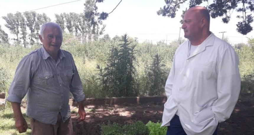 Se realizó la entrega de 600 plantines en Casa Hogar