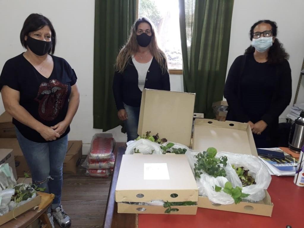 Huerta Familiar: comenzó la entrega de plantines