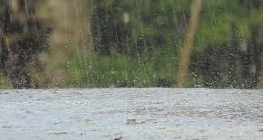 Registro de precipitaciones de Urdampilleta y la zona.